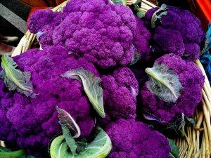 Purple+Cauliflower1